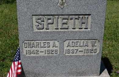 SPIETH, ADELIA W. - Medina County, Ohio | ADELIA W. SPIETH - Ohio Gravestone Photos