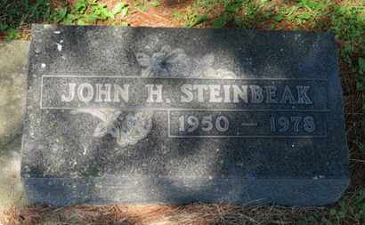 STEINBEAK, JOHN - Medina County, Ohio | JOHN STEINBEAK - Ohio Gravestone Photos