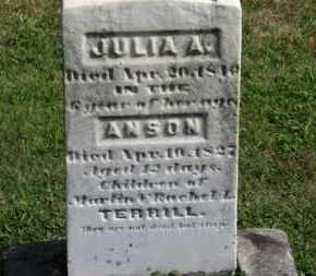 TERRILL, ANSON - Medina County, Ohio | ANSON TERRILL - Ohio Gravestone Photos