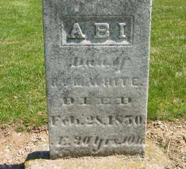 WHITE, ABI - Medina County, Ohio | ABI WHITE - Ohio Gravestone Photos