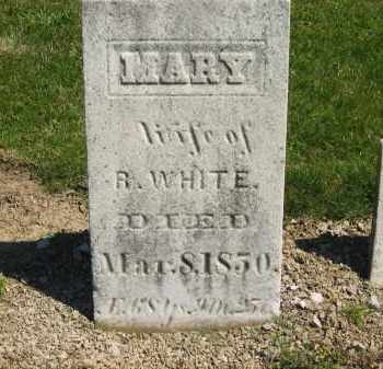 WHITE, MARY - Medina County, Ohio | MARY WHITE - Ohio Gravestone Photos