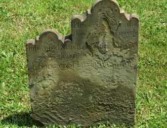 WILMOT, JULIA A. - Medina County, Ohio | JULIA A. WILMOT - Ohio Gravestone Photos