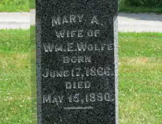 WOLFE, WM. E. - Medina County, Ohio | WM. E. WOLFE - Ohio Gravestone Photos
