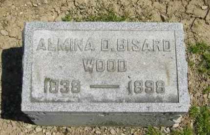 WOOD, ALMINA D. - Medina County, Ohio | ALMINA D. WOOD - Ohio Gravestone Photos