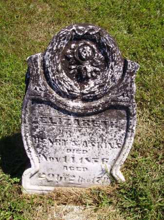 ROMINE ASKINS, ELIZABETH - Meigs County, Ohio | ELIZABETH ROMINE ASKINS - Ohio Gravestone Photos