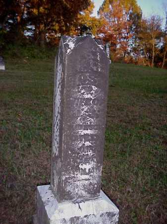 GREENLER ALDERSON, ROSE - Meigs County, Ohio | ROSE GREENLER ALDERSON - Ohio Gravestone Photos