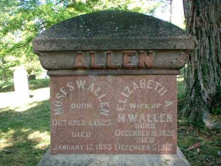 PRATT ALLEN, ELIZABETH A. - Meigs County, Ohio | ELIZABETH A. PRATT ALLEN - Ohio Gravestone Photos