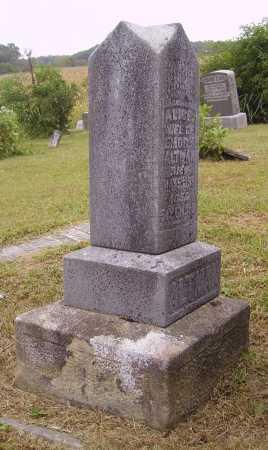 ALTMAN, ALICE - OVERALL VIEW - Meigs County, Ohio | ALICE - OVERALL VIEW ALTMAN - Ohio Gravestone Photos