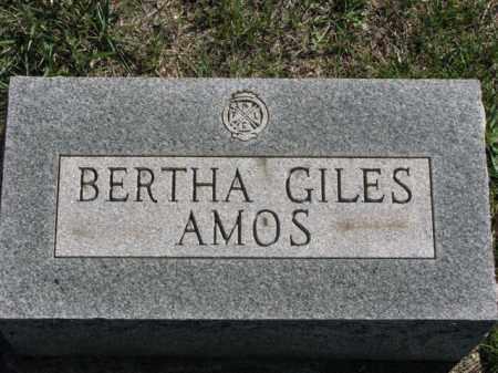 GILES AMOS, BERTHA - Meigs County, Ohio | BERTHA GILES AMOS - Ohio Gravestone Photos