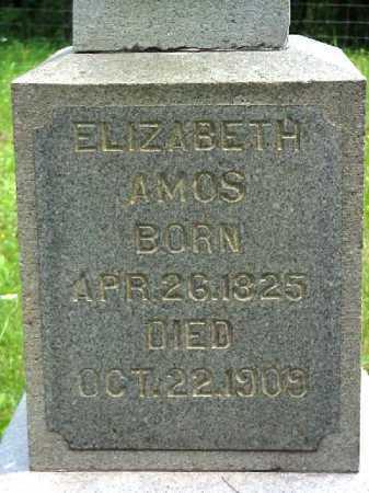 AMOS, ELIZABETH - Meigs County, Ohio | ELIZABETH AMOS - Ohio Gravestone Photos
