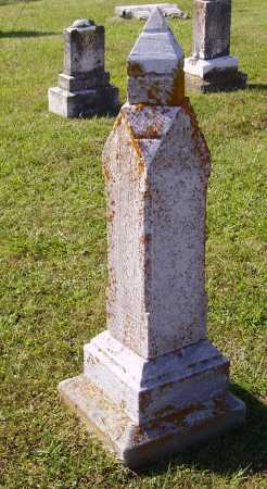 AMOS, JERRY P. - OVERALL VIEW - Meigs County, Ohio | JERRY P. - OVERALL VIEW AMOS - Ohio Gravestone Photos