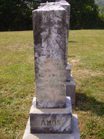 HARMON AMOS, MARY J. - Meigs County, Ohio   MARY J. HARMON AMOS - Ohio Gravestone Photos