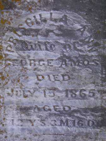 AMOS, PRISCILLA ANN - Meigs County, Ohio | PRISCILLA ANN AMOS - Ohio Gravestone Photos