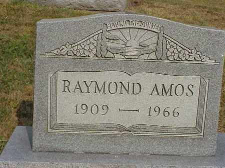 AMOS, RAYMOND - Meigs County, Ohio | RAYMOND AMOS - Ohio Gravestone Photos