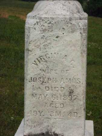 AMOS, VIRGINIA G. - CLOSEVIEW - Meigs County, Ohio | VIRGINIA G. - CLOSEVIEW AMOS - Ohio Gravestone Photos