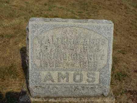 AMOS, WALTER M. - Meigs County, Ohio   WALTER M. AMOS - Ohio Gravestone Photos
