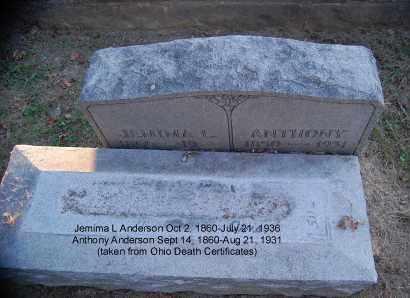 ANDERSON, JEMIMA L - Meigs County, Ohio | JEMIMA L ANDERSON - Ohio Gravestone Photos