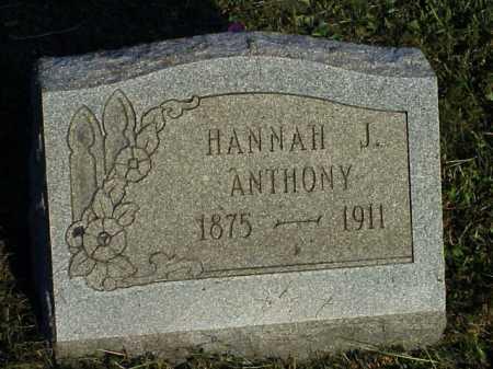 HOPKINS ANTHONY, HANNAH J. - Meigs County, Ohio | HANNAH J. HOPKINS ANTHONY - Ohio Gravestone Photos