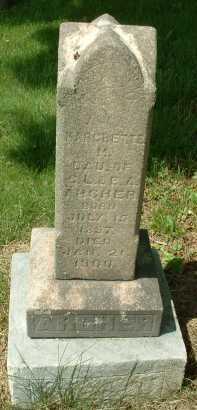 ARCHER, MARGRETTE M - Meigs County, Ohio | MARGRETTE M ARCHER - Ohio Gravestone Photos