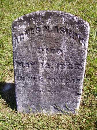 ASKINS, AGNES NANCY - Meigs County, Ohio | AGNES NANCY ASKINS - Ohio Gravestone Photos