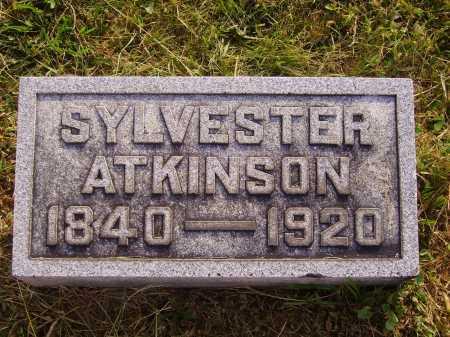 ATKINSON, SYLVESTER - Meigs County, Ohio   SYLVESTER ATKINSON - Ohio Gravestone Photos
