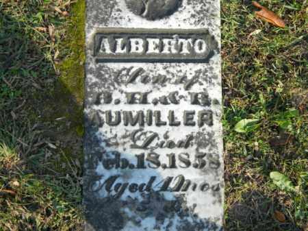 AUMILLER, ALBERTO - Meigs County, Ohio   ALBERTO AUMILLER - Ohio Gravestone Photos