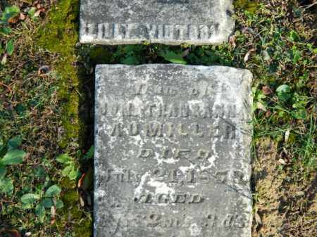 AUMILLER, LILY VICTORIA - Meigs County, Ohio | LILY VICTORIA AUMILLER - Ohio Gravestone Photos