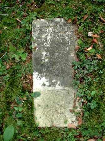 BAILEY, BERRYMANE - Meigs County, Ohio | BERRYMANE BAILEY - Ohio Gravestone Photos