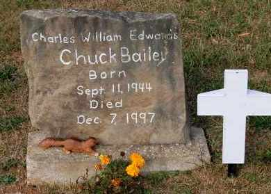 BAILEY, CHUCK - Meigs County, Ohio | CHUCK BAILEY - Ohio Gravestone Photos