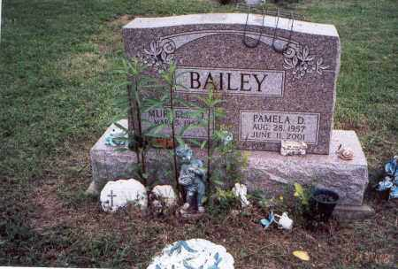 BAILEY, PAMELA D. - Meigs County, Ohio | PAMELA D. BAILEY - Ohio Gravestone Photos