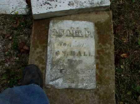 BALL, ASAEL P. - Meigs County, Ohio   ASAEL P. BALL - Ohio Gravestone Photos