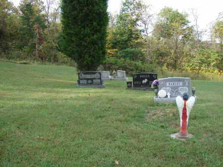 BARLEY, OVERVIEW - Meigs County, Ohio   OVERVIEW BARLEY - Ohio Gravestone Photos