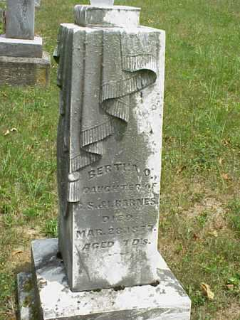 BARNES, BERTHA O. - Meigs County, Ohio | BERTHA O. BARNES - Ohio Gravestone Photos