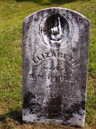 BARNES, ELIZABETH - Meigs County, Ohio | ELIZABETH BARNES - Ohio Gravestone Photos