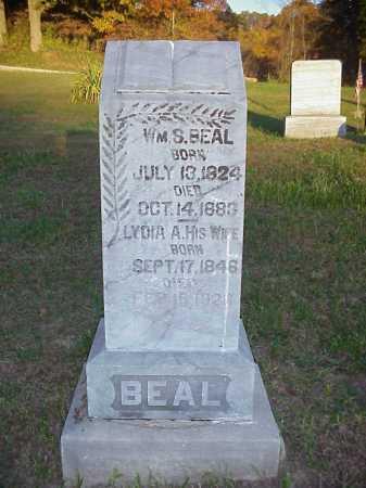 BEAL, LYDIA A. - Meigs County, Ohio | LYDIA A. BEAL - Ohio Gravestone Photos