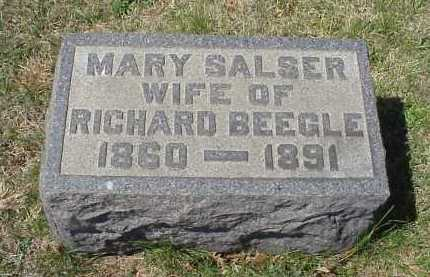 SALSER BEEGLE, MARY SALSER - Meigs County, Ohio | MARY SALSER SALSER BEEGLE - Ohio Gravestone Photos