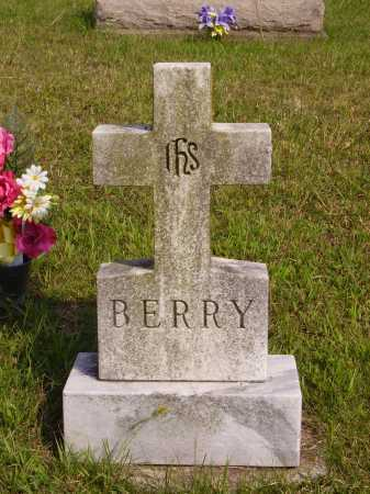 BERRY, UNKNOWN - Meigs County, Ohio   UNKNOWN BERRY - Ohio Gravestone Photos