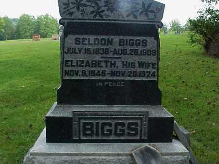 STANEART BIGGS, ELIZABETH - Meigs County, Ohio | ELIZABETH STANEART BIGGS - Ohio Gravestone Photos