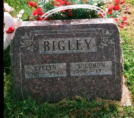 PRICE BIGLEY, EVELYN - Meigs County, Ohio   EVELYN PRICE BIGLEY - Ohio Gravestone Photos