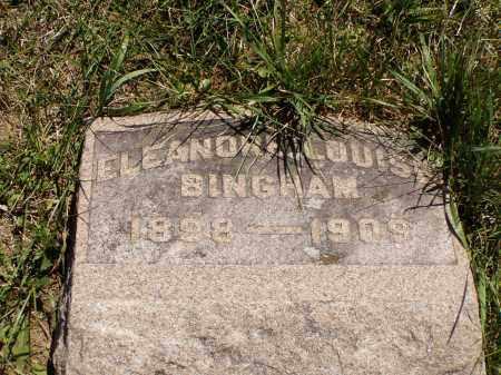 BINGHAM, ELEANORE LOUISA - Meigs County, Ohio | ELEANORE LOUISA BINGHAM - Ohio Gravestone Photos