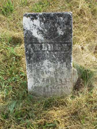 BISSELL, ANDREW - Meigs County, Ohio | ANDREW BISSELL - Ohio Gravestone Photos