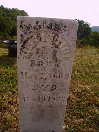 BISSELL, ALDEN S. - Meigs County, Ohio | ALDEN S. BISSELL - Ohio Gravestone Photos