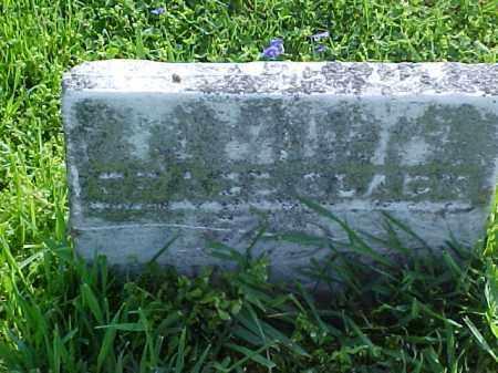 SPENCE, GRACE - Meigs County, Ohio | GRACE SPENCE - Ohio Gravestone Photos