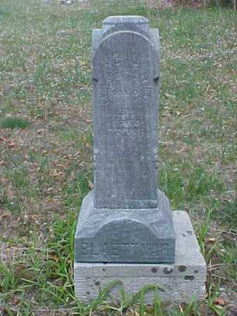 BLAETTNAR, LEONARD B. - Meigs County, Ohio | LEONARD B. BLAETTNAR - Ohio Gravestone Photos