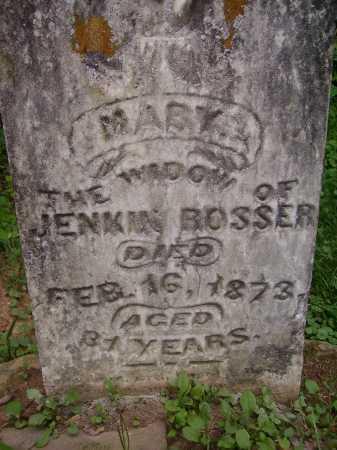 BOOSER, MARY - Meigs County, Ohio | MARY BOOSER - Ohio Gravestone Photos