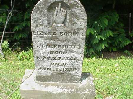 BORING, LIZENA - Meigs County, Ohio | LIZENA BORING - Ohio Gravestone Photos
