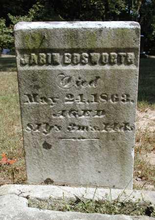 BOSWORTH, JABIN - Meigs County, Ohio | JABIN BOSWORTH - Ohio Gravestone Photos