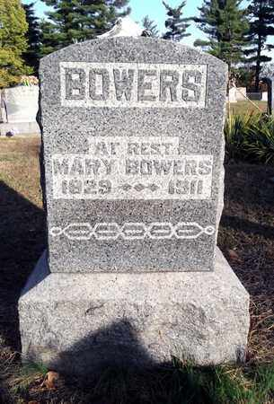 BOWERS, MARY - Meigs County, Ohio | MARY BOWERS - Ohio Gravestone Photos