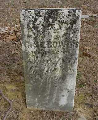BOWERS, SUSAN J. - Meigs County, Ohio | SUSAN J. BOWERS - Ohio Gravestone Photos