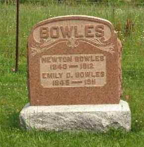 BOWLES, NEWTON - Meigs County, Ohio   NEWTON BOWLES - Ohio Gravestone Photos